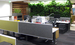 ISIS Perth 5 Star GBCA Fitout with eco refurb workstations